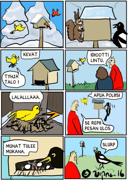 idiootti lintu